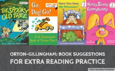 Orton-Gillingham: Book Suggestions for Extra Reading Practice