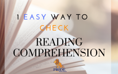 1 Easy Way to Check Your Student's Reading Comprehension