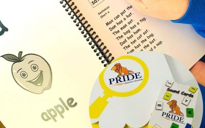 Mama Teaches Reviews the PRIDE Reading Program