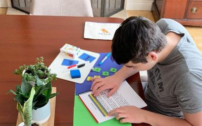 Using PRIDE With An Older Reader: A Review From Different By Design Learning